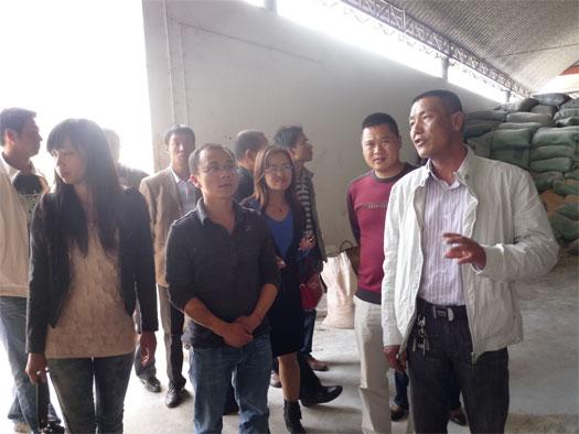 团县委组织各乡镇团委书记到马过河镇食用菌园区参观学习