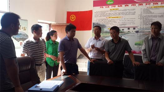 团市委书记李志伟到马过河镇调研基层团建工作