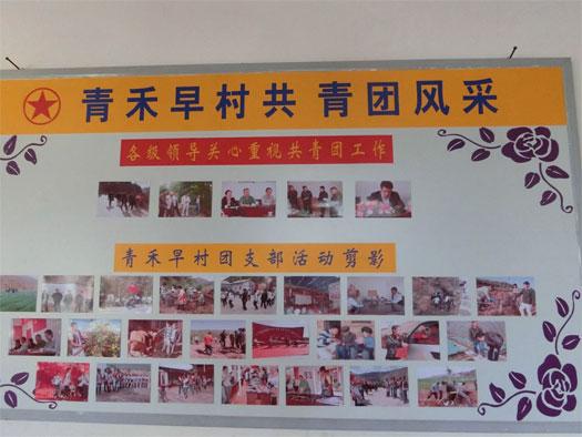 云南大理青禾早村团支部:通过村级团组织集体经济建设,促进村级团组织活动开展