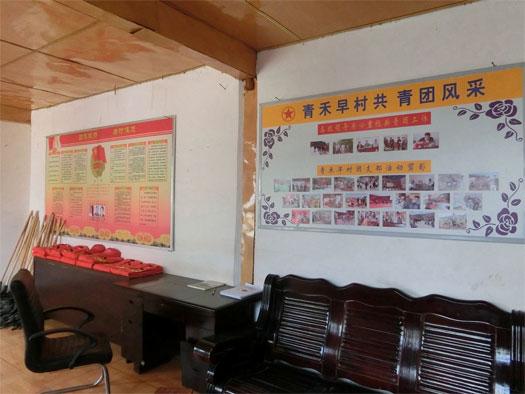 云南大理青禾早村团支部:通过村级团组织集体经济建设,促进村级团组织活动开展【4】