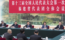 韩正参加福建代表团审议