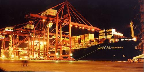 津港集装箱码头夜景图片