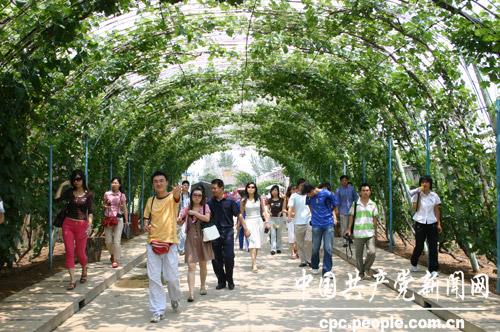 华中生态农业观光园生态农业休闲旅游可行性研究报告图片