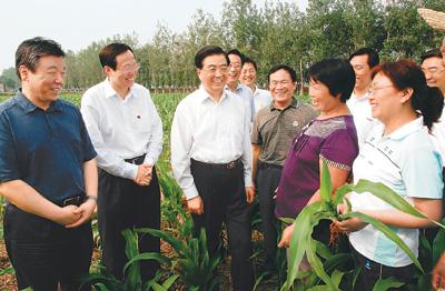 七月九日至十一日,中共中央总书记、国家主席、中央军委主席胡锦涛在河南省考察工作。这是胡锦涛到洛阳市孟津县平乐镇察看玉米长势,向正在施肥、除草的农民了解粮食生产和销售情况。新华社记者